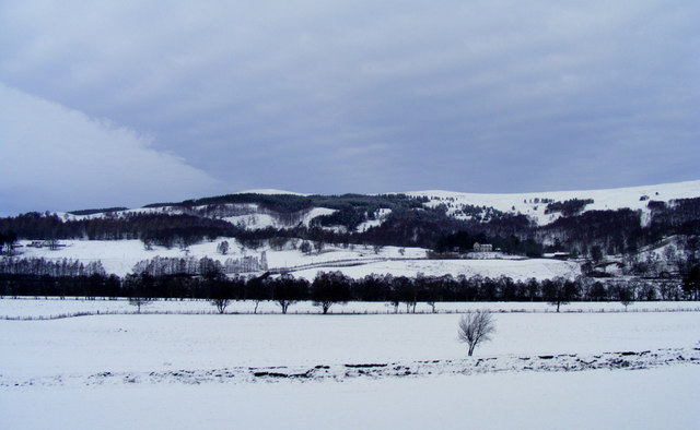 Looking towards the Speyside Way