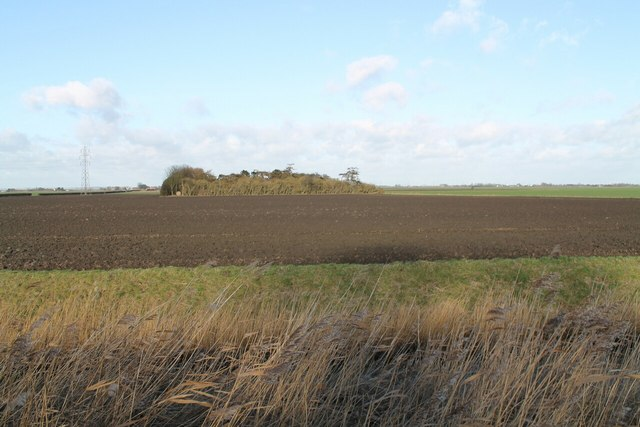 Ploughed Fields and Woodland