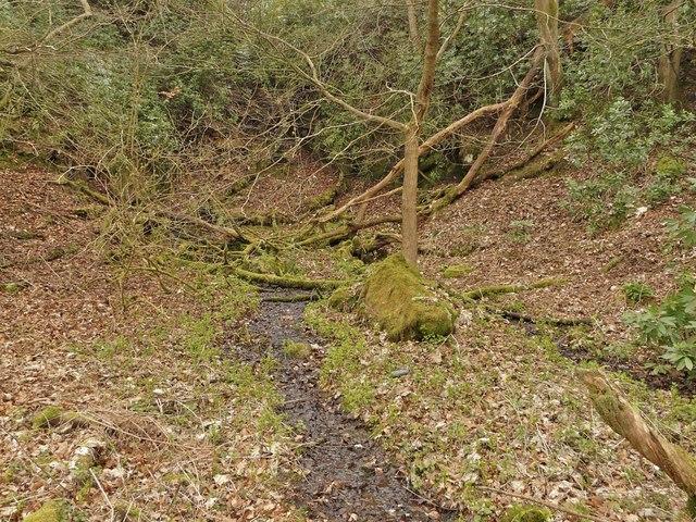 Hermit's Well, PrestonGlen, Linlithgow