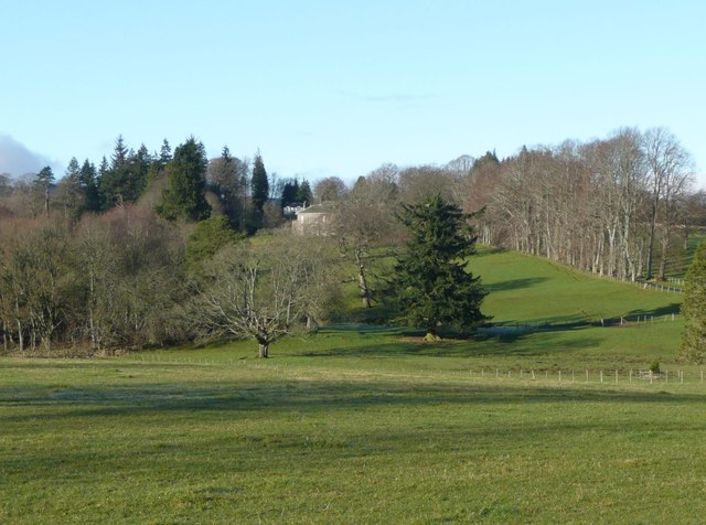 Pasture and trees