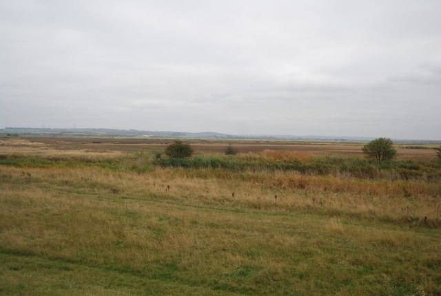 Halstow Marshes