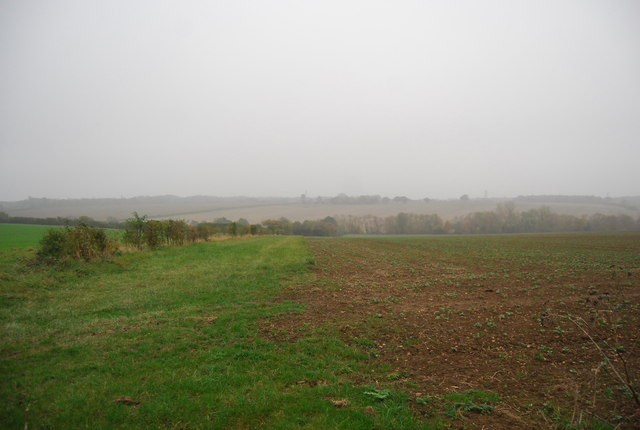 Farmland, Buckwell Farm