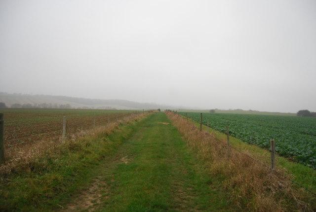 Footpath south west of Buckwell Farm