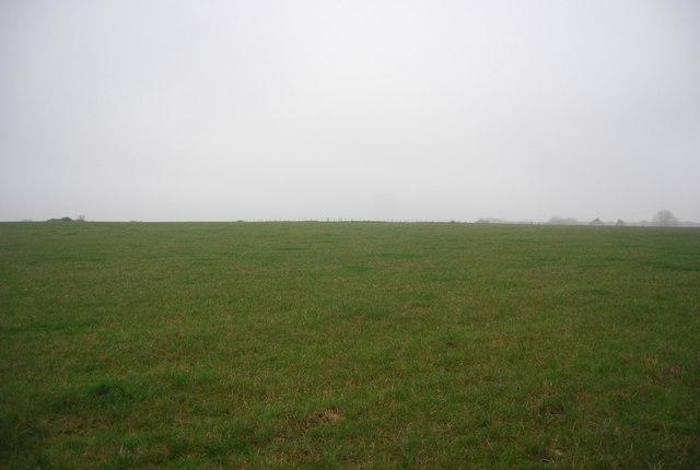Field near Buckwell Farm