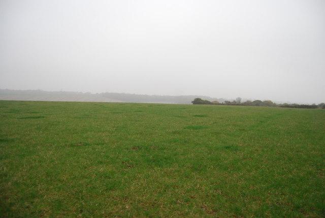 Field near Cadehill Wood