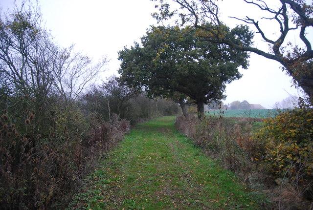 Track to Woodland Farm