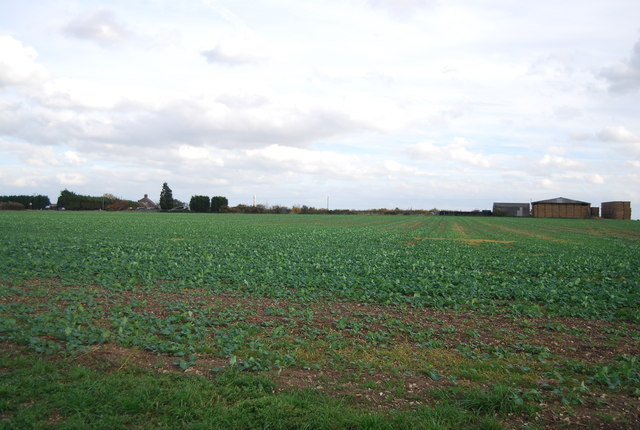 View to New Barn Farm