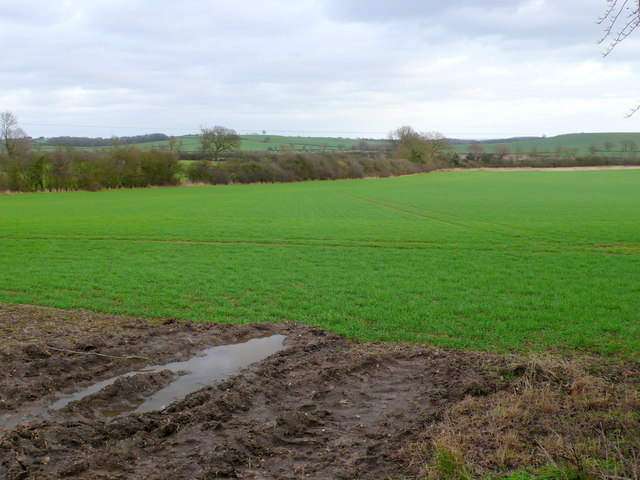 Field at Wolverton Grange Farm