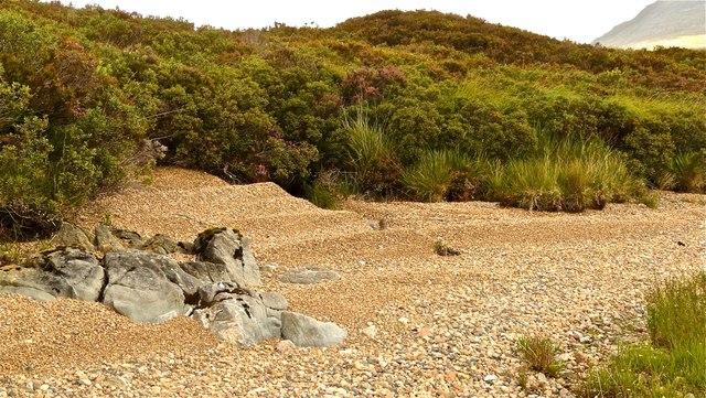 Loch Assynt south shore