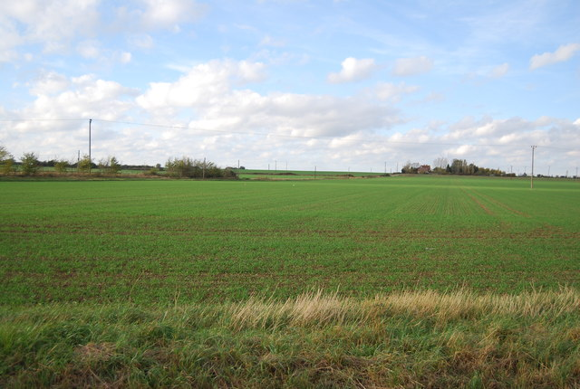 Fields north of the Ratcliffe Highway