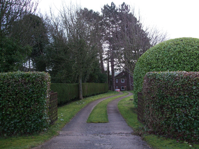 Ulmus, Castle Street, Aldbourne