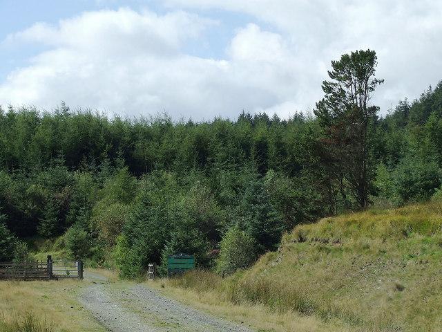 Entrance to the Dalarwen Plantation, Ceredigion