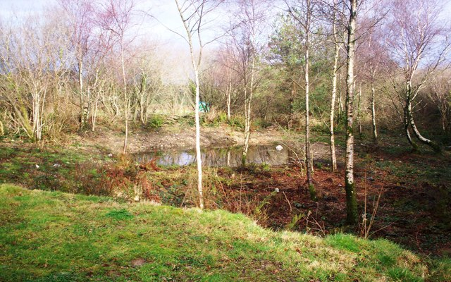 The Claypits Pond, Llanteg