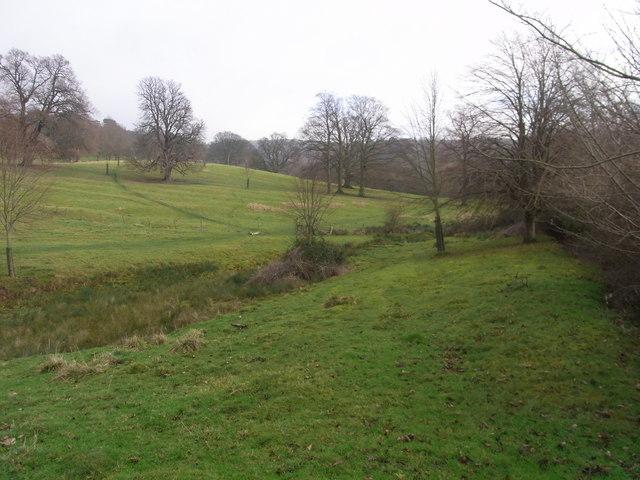Ridge-and-furrow in fields below Elm Coppice