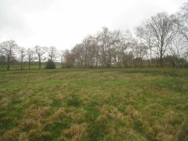 Northern corner of Frith Common
