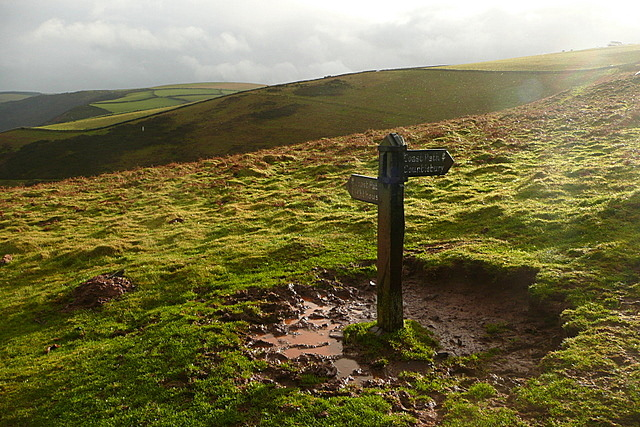 Signpost on The Foreland