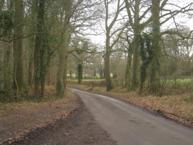 Heading south on Ham Lane
