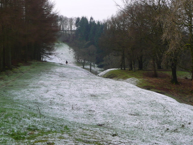 The Antonine Wall in Strone Plantation