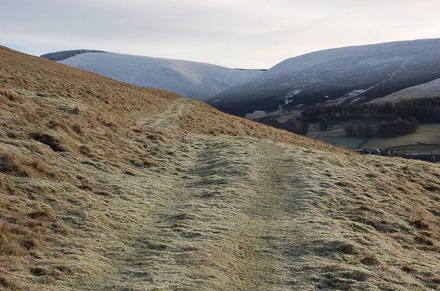 Track on Hog Hill