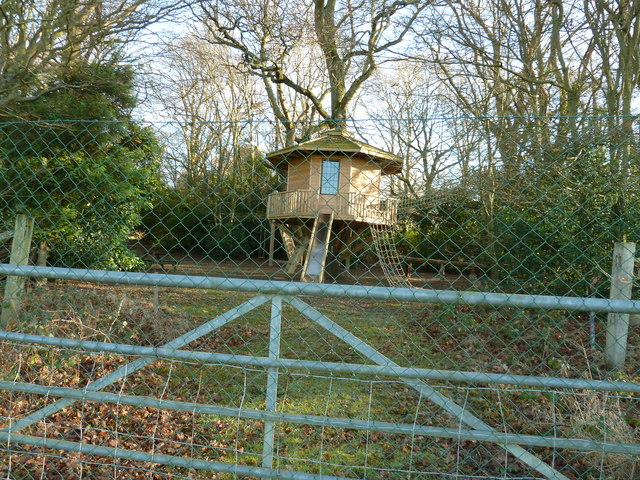 Tree house on the edge of Holford Wood