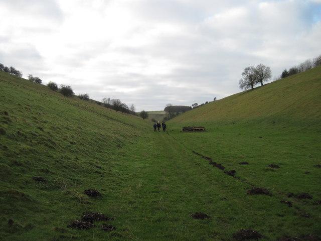 Thixen  Dale  towards  Milham
