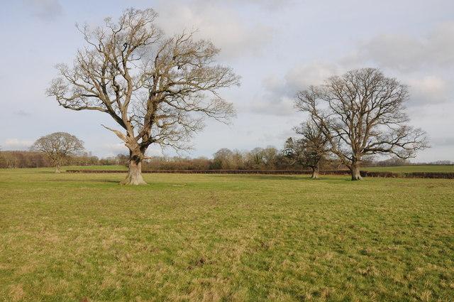 Farmland at Whitney-on-Wye