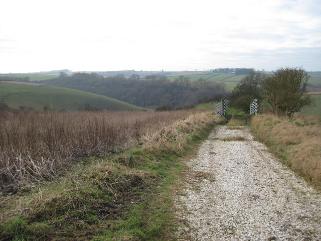 Track  down  into  Pluckham  Dale