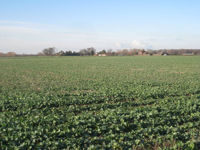 View towards Bank End Farm and Bank Farm