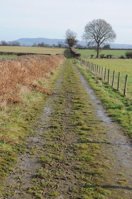 Bridleway near Red Gates