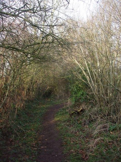 Footpath off School Lane, Chelwood