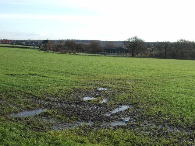 Farmland near Barwick in Elmet