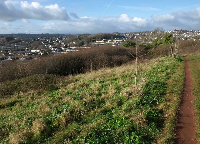 Grass field, Watcombe