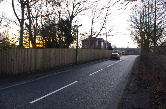 The lane by Middleton Hall