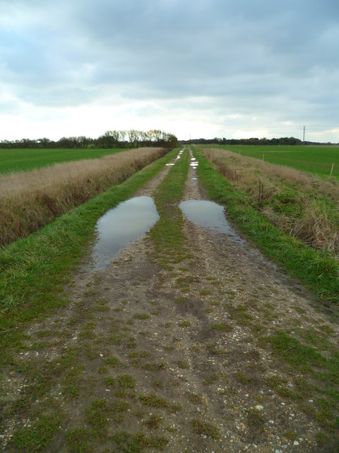 Selsey tramway now footpath