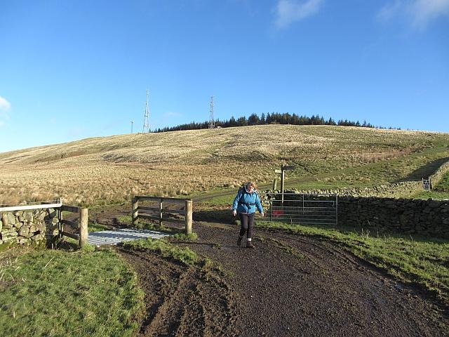 Meigle Hill