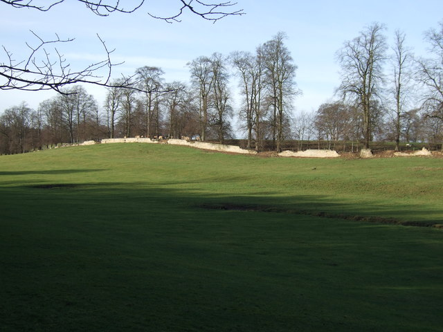 The Terraces near Aberford