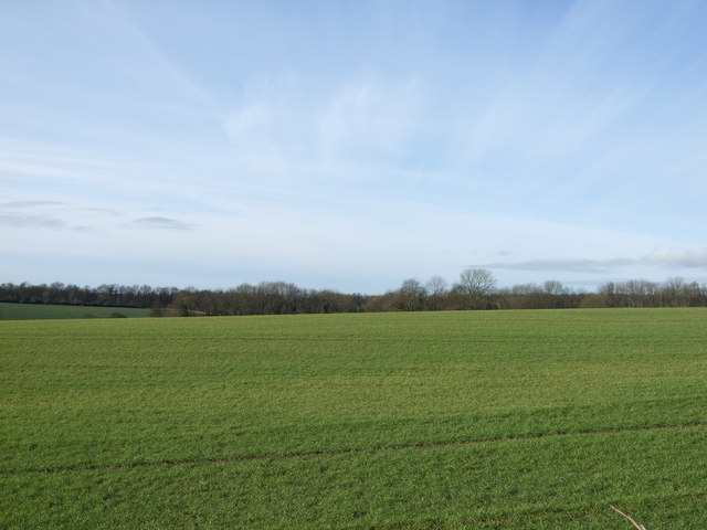 Farmland, Strawberry Hill