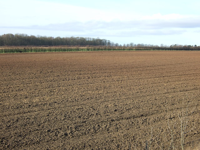 Farmland, Nut Hill