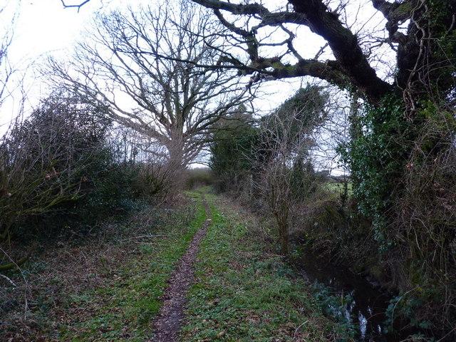 Bridleway towards Home Farm