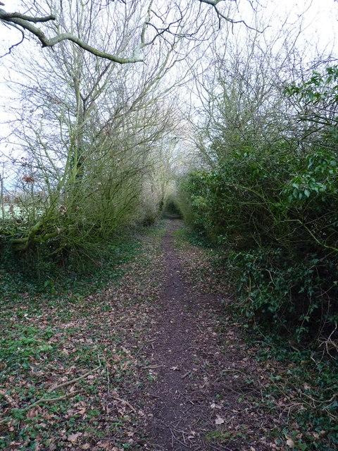 Along the bridleway towards Lower Drayton