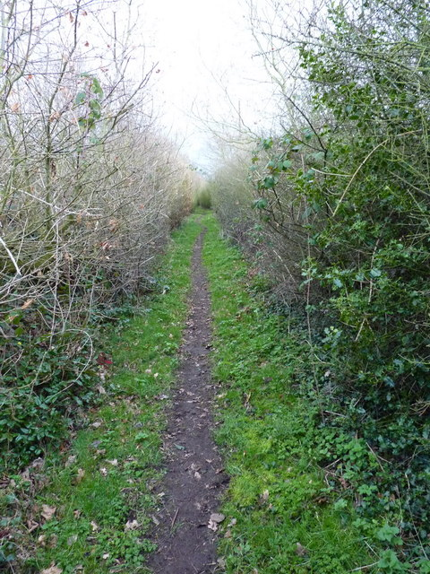 The bridleway leading to Lower Drayton