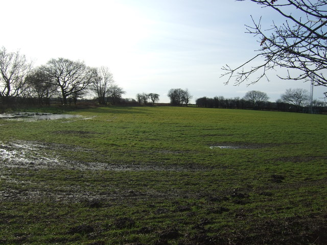 Farmland near Woodlands Farm