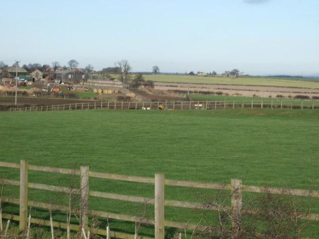 Farmland, Camp Hill