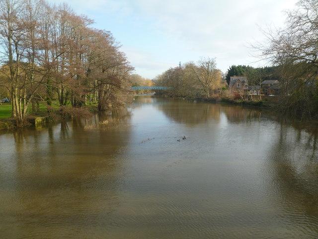 Blandford Forum, River Stour