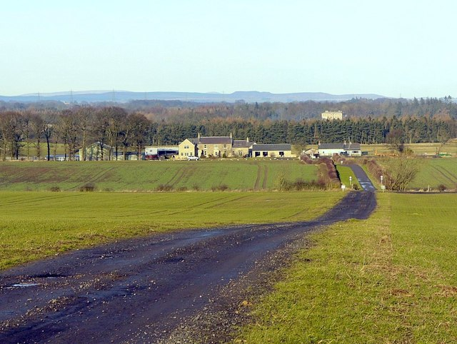 Track to South Dissington Farm