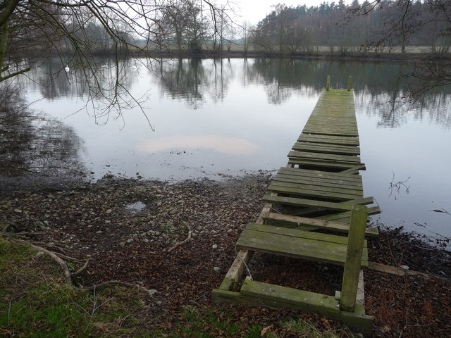 Old jetty on the Long Pool, Onslow Park
