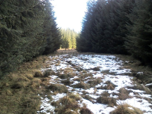 Balnaguard Burn tributary