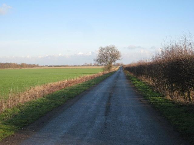 Dales Lane