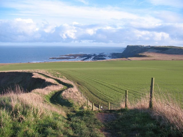 The Cleveland Way at Lebberston Cliff