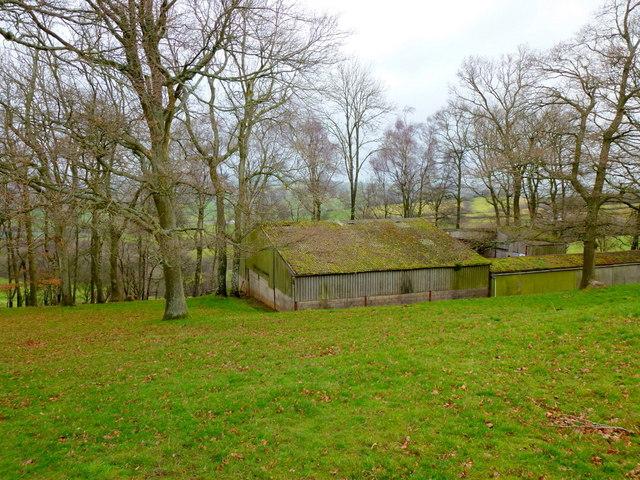 Green-roofed barn